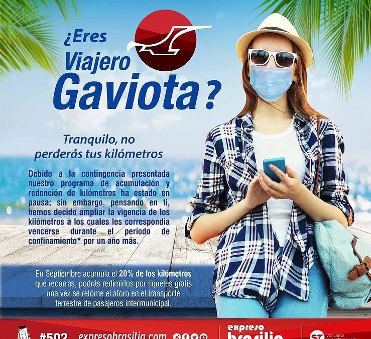 ¿Eres Viajero Gaviota? En Septiembre viaja y acumula el 20% de lo que recorras.